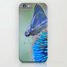 Why Not? Slim Case iPhone 6s