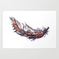 Feather // Illustration Art Print