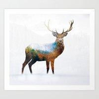 deer Art Prints featuring deer by mark ashkenazi