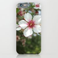 iPhone & iPod Case featuring Blossom Flower by Emele Photography