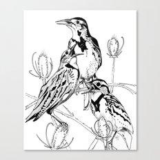 Three Western Meadowlarks Canvas Print