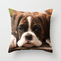 Alfie I Throw Pillow
