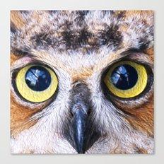 Big Eye Owl Canvas Print