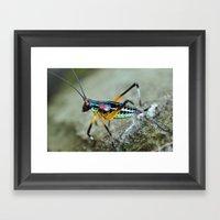 Rainbow Bug Framed Art Print