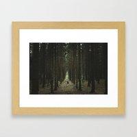 The Woods of St Olof 2 Framed Art Print