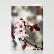 Sakura_00 Stationery Cards