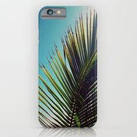 iPhone & iPod Case featuring Sunny Palm Tree by Goldfish Kiss