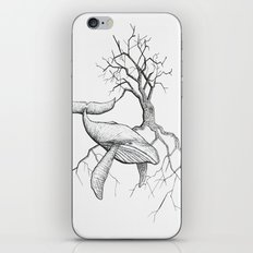 The Land Meets the Sea iPhone & iPod Skin