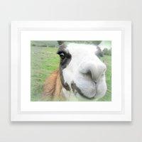 Friendly Alpaca Framed Art Print