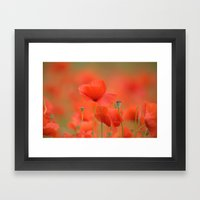 Common red poppies 1876 Framed Art Print