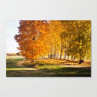 Gold Autumn Canvas Print