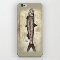 Sardine iPhone & iPod Skin