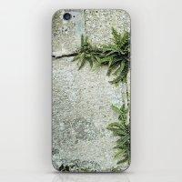 echapée de vert iPhone & iPod Skin