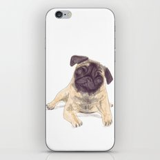 Pug Love iPhone & iPod Skin