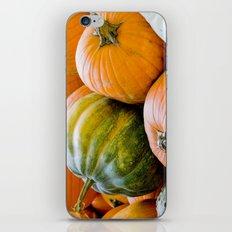 Fall: Green Pumpkin iPhone & iPod Skin