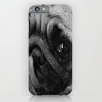 iPhone & iPod Case featuring Pug Dog by Celso Azevedo