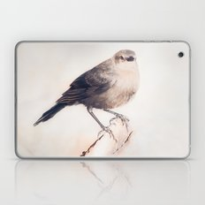 Little Capitola Bird Laptop & iPad Skin
