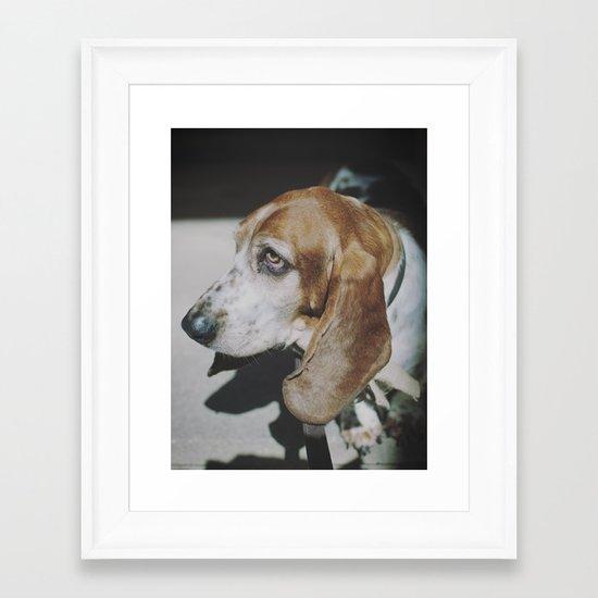 Tilly the wonderdog... Framed Art Print