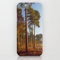 Rising Sun And Tree iPhone 6 Slim Case