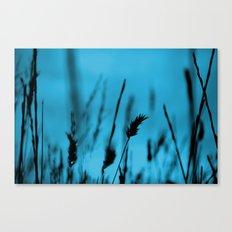 weatblue Canvas Print