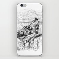 Wolf in woods G082 iPhone & iPod Skin