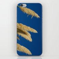 A Soft Breeze, Against A… iPhone & iPod Skin