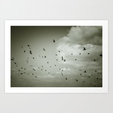 Birds over sea Art Print