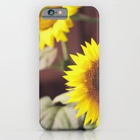 Sunny iPhone 6 Slim Case