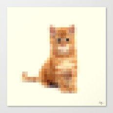 Censored Cat Canvas Print