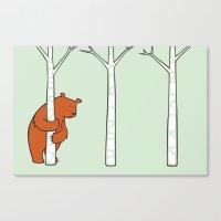 Shy Bear Canvas Print