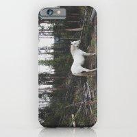 The White Horse iPhone 6 Slim Case