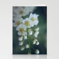 macro Stationery Cards