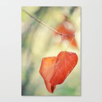 If You Forget Me Canvas Print