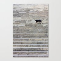Doge on stairs Canvas Print