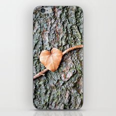 Heart and tree iPhone & iPod Skin