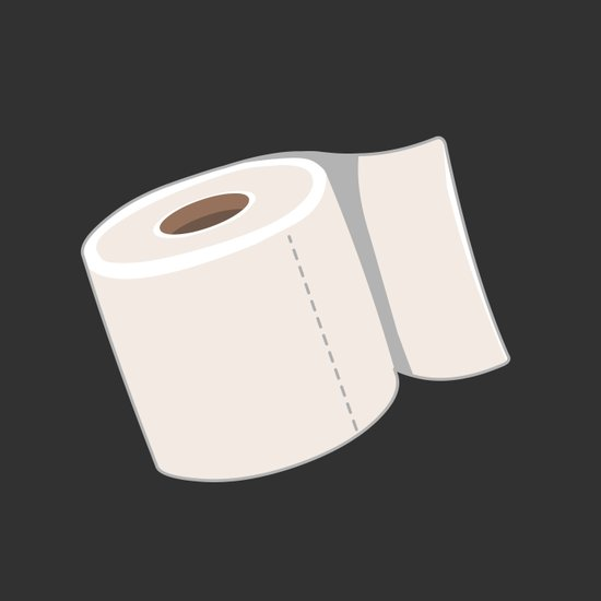 Toilet Paper Canvas Print
