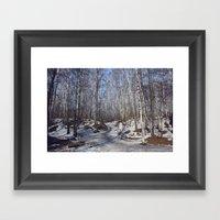 birch forest Framed Art Print