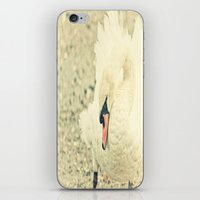 Swanny iPhone & iPod Skin