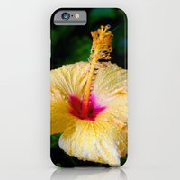 iPhone & iPod Case featuring Wet Hibiscus version 2 by Brian Walsh