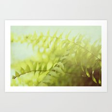 fern goodness Art Print