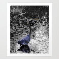 Great Blue Heron near Canandaigua Lake Art Print