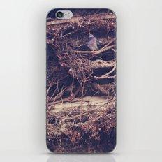 Mansion iPhone & iPod Skin