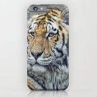 iPhone & iPod Case featuring panthera tigris by Jo.PinX