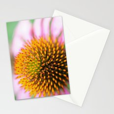 Coneflower Stationery Cards