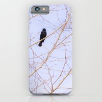 Red-winged Blackbird Pink Branches iPhone 6 Slim Case
