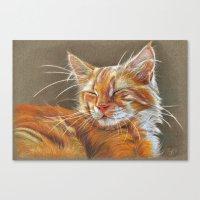 Sleeping Ginger Kitten CC12-005 Canvas Print
