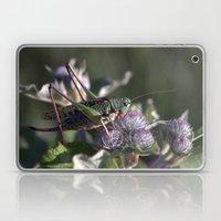 Grasshopper 4110 Laptop & iPad Skin
