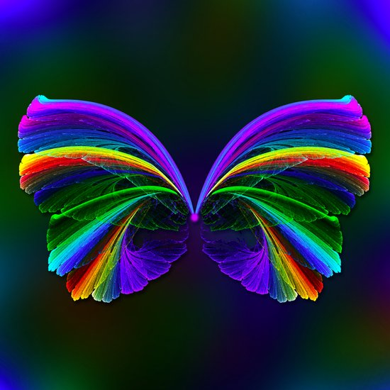 Rainbow Butterfly Art Print