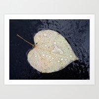 A Leaf In The Rain Art Print
