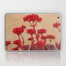 Rustic Flowers Laptop & iPad Skin